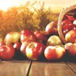 Gita delle mele