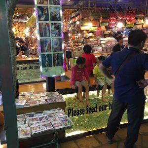 foto dalla Cambogia
